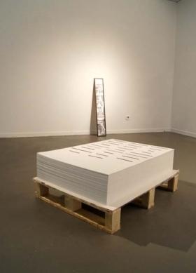 Sala d'Art Jove_La Noia que somiava un llumí i un bidó de gasolina_2010