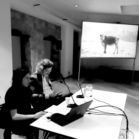 Sala d'Art Jove.The Human Hibernation Project 2020