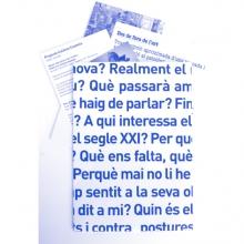 Sala d'Art Jove_desplaçaments_2008